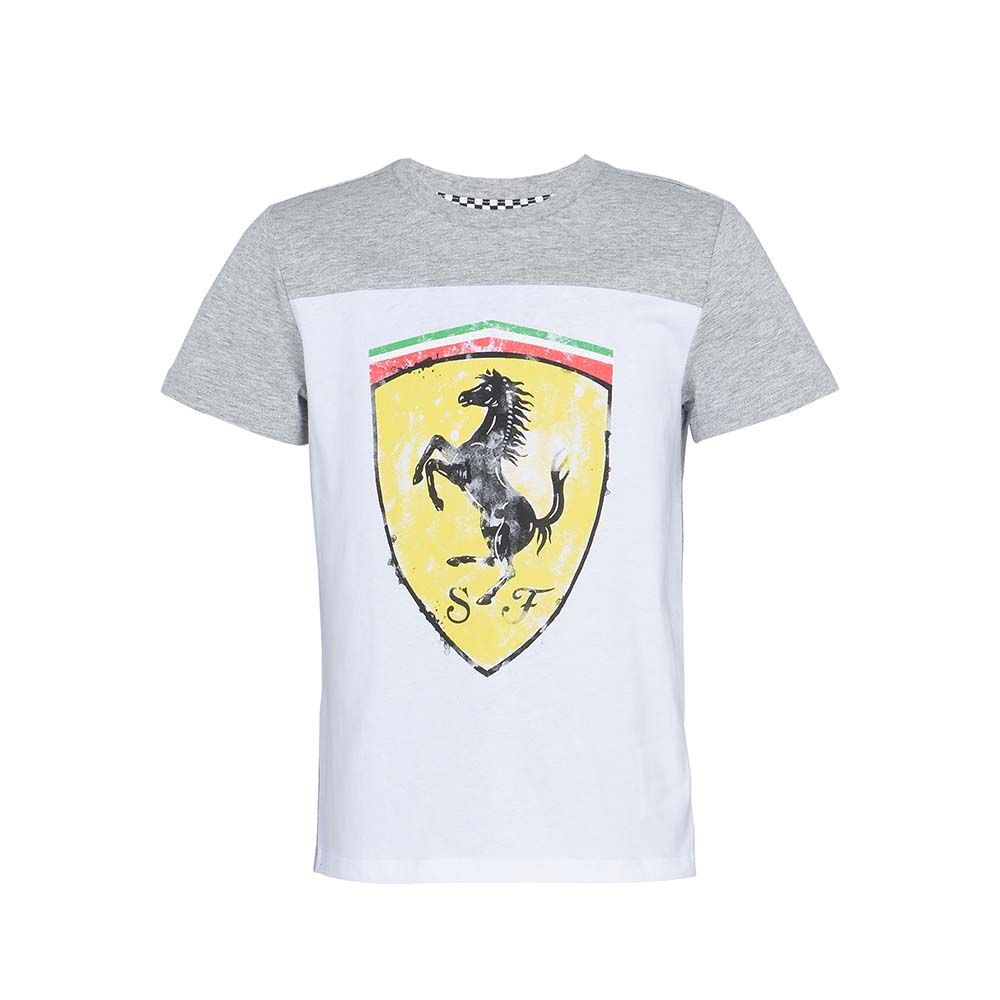 60fba7b23b18 Футболка Ferrari, серая с белым 163-2060